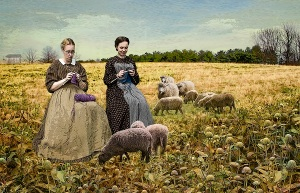 Yarn Farm by Mickie Rosen, photographer