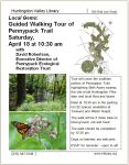 Local gems walking tour
